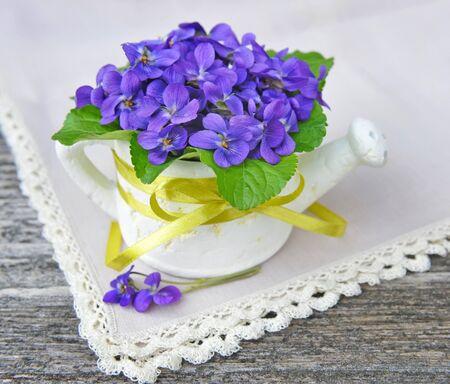Wood violets flowers (Viola odorata) Stock Photo