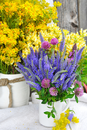 veronica flower: Beautiful bouquets of bright wildflowers