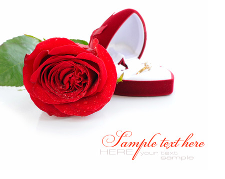 case sheet: Red rose and red velvet box with golden ring on white background