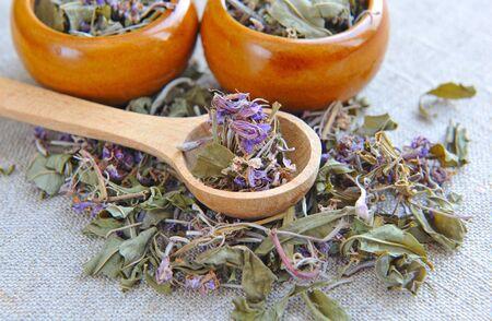 alternative health: Dry herbal tea Chamerion in a wooden spoon on sackcloth, herbal medicine