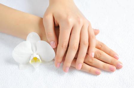 Mooie vrouw handen met witte orchidee bloem