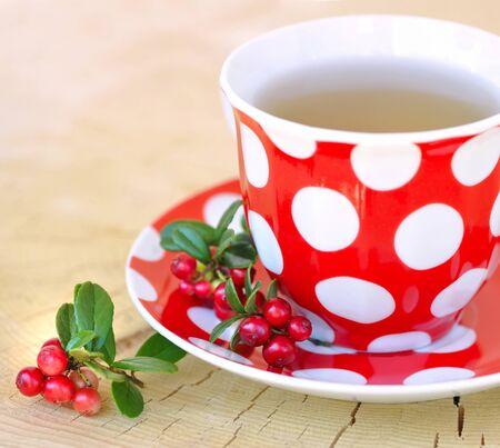 cowberry: Cowberry (Vaccinium vitis-idaea) tea outdoors Stock Photo