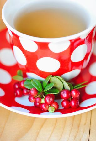 cowberry: Cowberry (Vaccinium vitis-idaea) tea