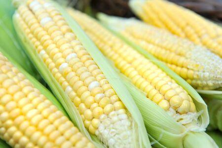 Fresh corn cobs, close-up Stock Photo