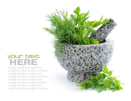 morter: Stone mortar and pestle with greenery of parsley and dill on white background Stock Photo