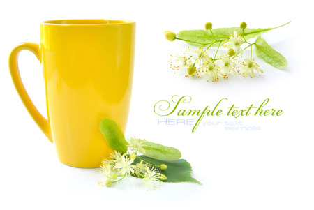 linden tree: Flowers of linden tree are with the cup of tea