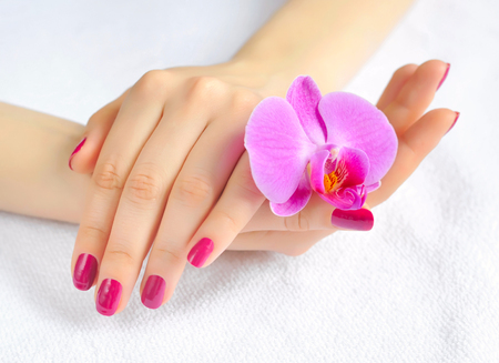bodypart: Beautiful hands with manicure and purple orchid flower