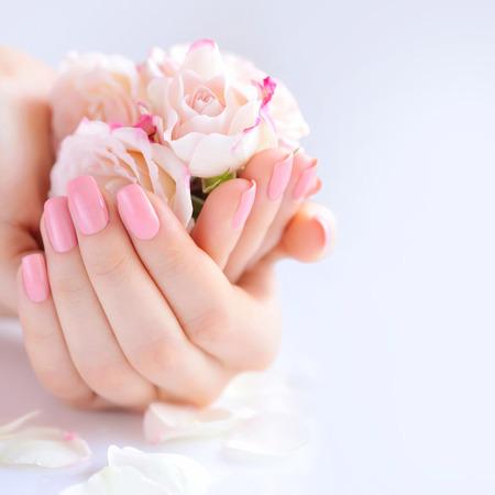 Handen van een vrouw met roze manicure op nagels en rozen tegen een witte achtergrond Stockfoto