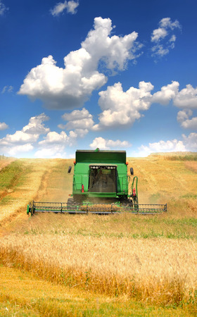 Combine harvester working on the field Stock Photo