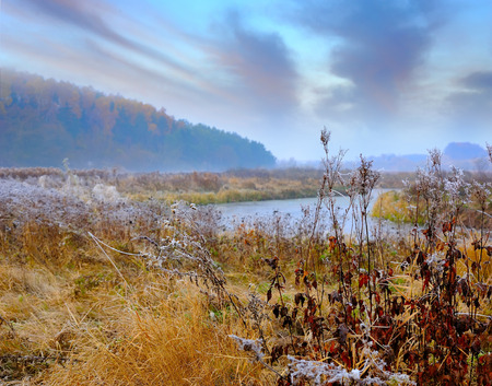 frosted: Frosted autumn meadow at dawn