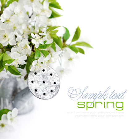 wateringcan: Watering can with cherry flowers on a white background with space for your text Stock Photo
