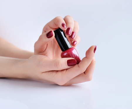 nail polish bottle: Hands of a woman with dark red manicure and nail polish bottle