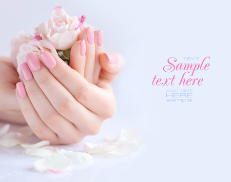 Hands of a woman with pink manicure on nails and roses against white background Zdjęcie Seryjne - 71813617