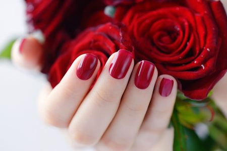 salud sexual: Hands of a woman with dark red manicure with a bouquet of red roses
