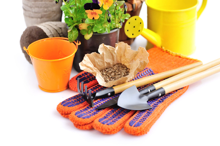Gardening tools and seed and spring flowers on a white background Stock Photo