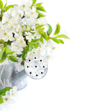 Watering can with cherry flowers on a white background