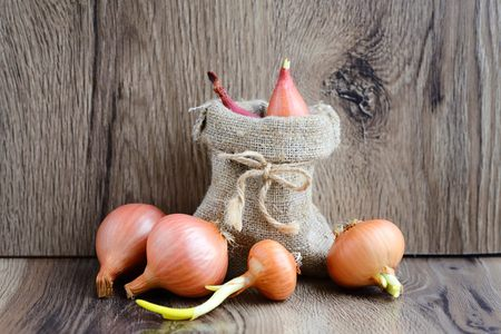 Dry bulb onions for planting in a small sack on wooden background Stock Photo