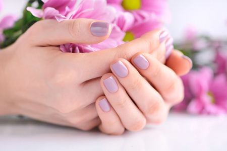 Hands of a woman with pink manicure on nails and pink flowers Stock Photo
