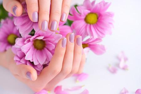 Handen van een vrouw met roze manicure op nagels en roze bloemen Stockfoto