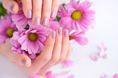 Hands of a woman with pink manicure on nails and pink flowers Stok Fotoğraf