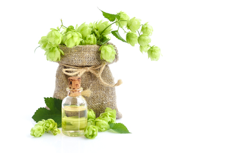 Fresh green hops (Humulus) in burlap bag with medicinal plant extract in glass bottle on white background