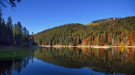 Synevir high altitude lake and forest is reflected in calm water at autumn day 版權商用圖片