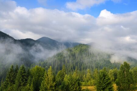 Beautiful mountain landscape with fog. Summer morning in the Carpathians