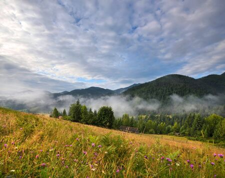 Amazing mountain landscape with fog and colorful herbs. Sunny morning after rain. Carpathian, Ukraine, Europe Stock Photo