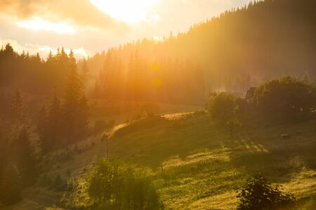 Beautiful mountain landscape with sunbeams. Summer evening in the Carpathians Stock Photo