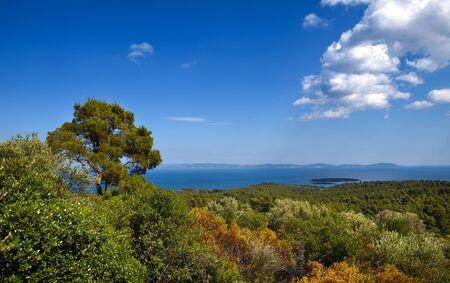 Sea view from the hilly coast on a sunny day