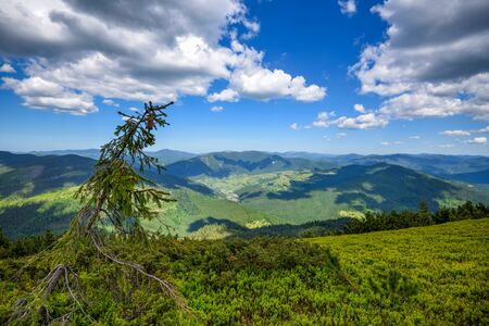 Summer landscape in mountains and blue sky with clouds. Carpathian, Ukraine, Europe.