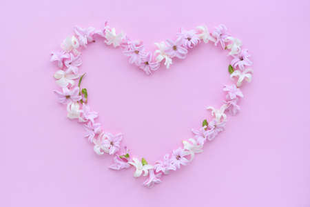 Heart symbol made of fresh hyacinth flowers on pink background. Flat lay, top view, copy space Stockfoto