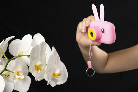 Children s hand holds a pink camera and photographs a white orchid flower on a black background