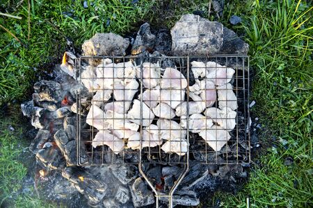 Grilled meat at the stake. Picnic in the nature at sunset. The taste of summer.