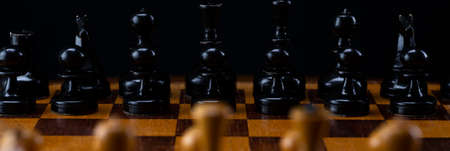 Black chess pieces against white chess pieces on a chessboard.