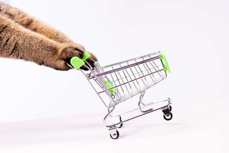 Cat paws pushing empty shopping cart on white background, shopping concept, products for cats, empty space in cart, side view, grocery basket. 免版税图像