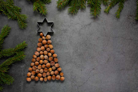 Christmas tree of hazelnuts with a ringing on top of the head. copy space for text. holiday, celebration and cooking concept