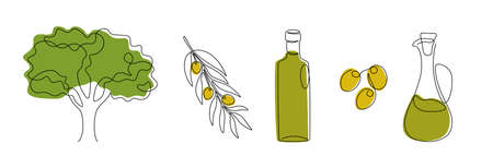One line olive. Continuous line olive tree, branches and glass bottle of oil, cooking ingredient. Vector isolated set