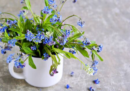 Bouquet of blue, pink and white forget-me-nots in a white ceramic mug on a gray concrete background. Spring flowers.
