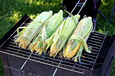 Cooking corn cobs on a wood charcoal grill in the garden. Harvest the corn. Thanksgiving Day. American cuisine.