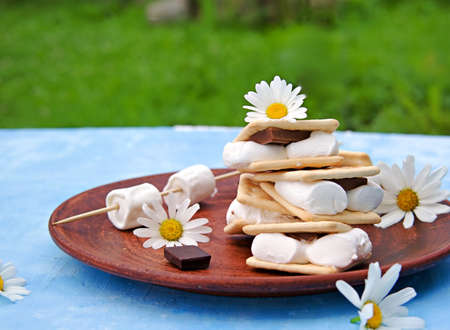 Homemade smores dessert with marshmallows, milk chocolate and cracker on a brown clay plate on a blue concrete background. American food. Picnic concept. Stock fotó