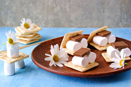 Ingredients for making smores on a clay plate: marshmallows, milk chocolate, wheat cracker. American food. Children goodies.