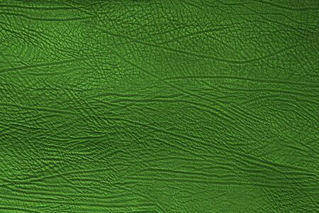 Skin texture, green skin background photo