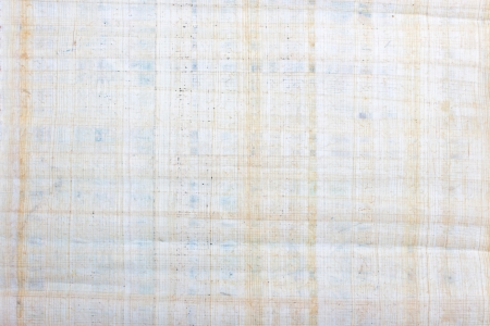 old blank manuscript, paper texture, may use as background  Stock Photo - 13734919