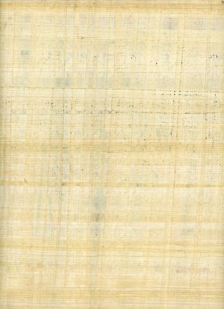 vintage paper; pergament,Parchment texture Stock Photo - 14695399