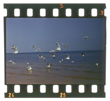 Grunge film frame, ocean view, birds in the water photo