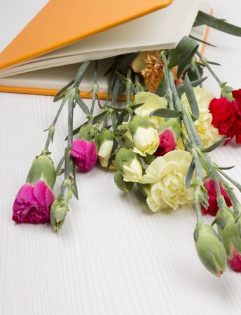 carnations in the book on the table photo