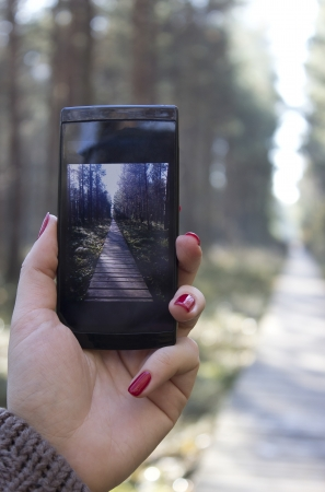Hand holding mobile phone, Photographing landscape with mobile in the forest. Stock Photo - 16240197