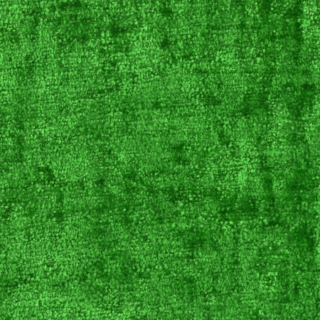 green material texture, close up Stock Photo - 16864033