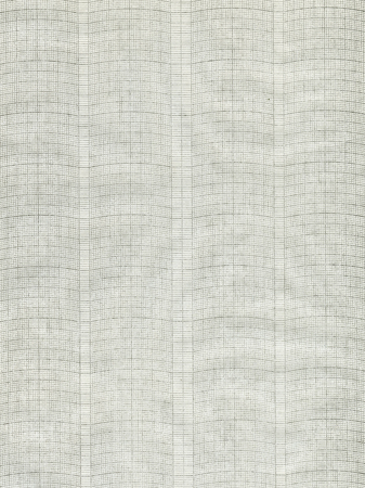 the plotting: XXL millimeter paper, graph paper, plotting paper.  Stock Photo